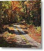Fall On The Wyrick Trail Metal Print