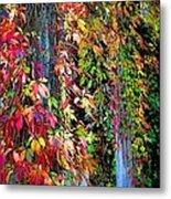 Fall Palette Metal Print