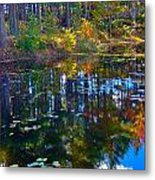 Fall Reflection 2 Metal Print