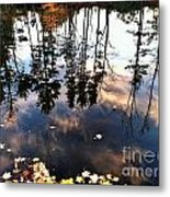Fall Reflection Of Pines Metal Print