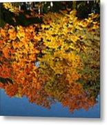 Fall Reflectionsin Michigan Metal Print