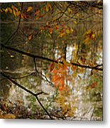 Fall River Branches Metal Print