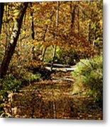 Fall River Colors Metal Print
