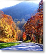 Fall Road 2 Metal Print