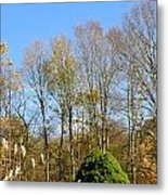 fall scapes in CT Metal Print