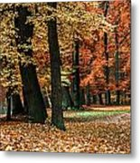 Fall Scenery Metal Print