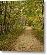 Fall Trail Scene 23 Metal Print