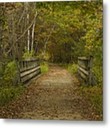 Fall Trail Scene 24 Metal Print
