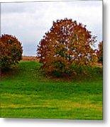 Fall Tree Line Metal Print