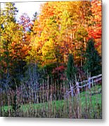 Fall Trees And Fence Metal Print