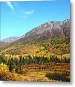 Fall Valley Metal Print