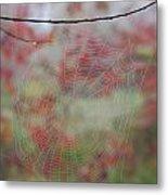 Fall Web Metal Print