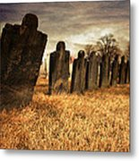 Fallen Comrades Of The Civil War Metal Print