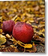 Fallen Fruit Metal Print