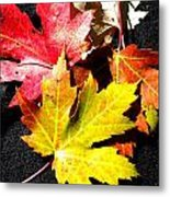 Fallen In The Fall Metal Print