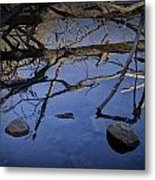Fallen Tree Trunk With Reflections On The Muskegon Rive Metal Print