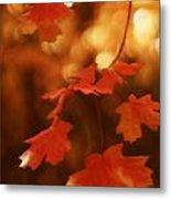 Falling Into Autumn Metal Print
