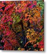 Falls Fiery Rainbow Metal Print
