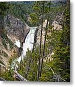 Falls In The Grand Canyon Of Yellowstone Metal Print