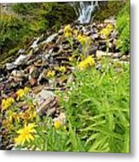 Falls To The Flowers Metal Print