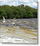 Family Flight On The Final Winds Of Issac  Metal Print