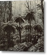Family Walking Through A Forest Of Tree Metal Print