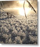 Fanciful Frosty Fractal Forest Metal Print