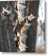Fancy Fractal Frost Crystals Metal Print