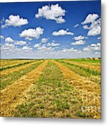 Farm Field At Harvest In Saskatchewan Metal Print
