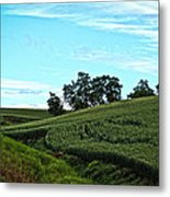 Farm Fields Metal Print