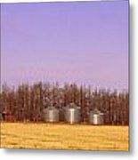 Farm Scene North Of Calgary, Alberta Metal Print