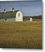 Farm Scene With White Barn Metal Print