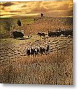 Farming To Beat The Storm Metal Print