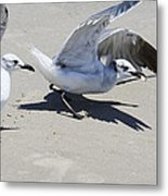 Faster Than The Other Guy Metal Print