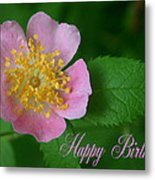 February Birthday Metal Print