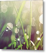 Feeling Good Metal Print