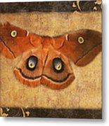 Female Moth Metal Print