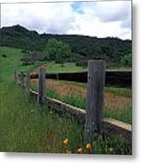 Fence And Poppies Metal Print