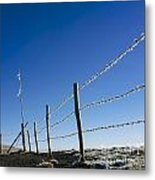 Fence Covered In Hoarfrost In Winter Metal Print