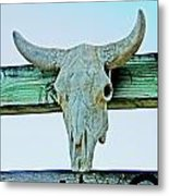 Fence Decor Ranch Style Metal Print