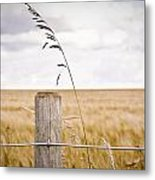 Fence Post Metal Print