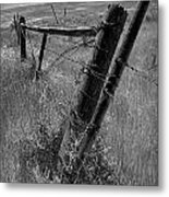 Fence Posts And Barbed Wire At The Edge Of A Field In Montana Metal Print