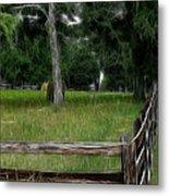 Fenced In Field Metal Print