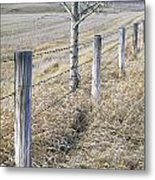 Fenceline And Cropland In Late Fall Metal Print by Darwin Wiggett