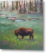 Ferdinand Yellowstone Np Metal Print by Karin  Leonard