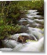 Fern Creek Horizontal Metal Print