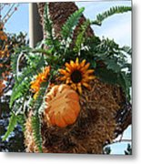 Fern Haired  Metal Print
