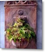 Fern In Antique Wall Planter Metal Print