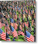 Field Of Flags Metal Print