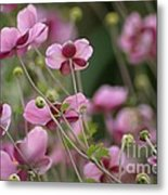 Field Of Japanese Anemones Metal Print